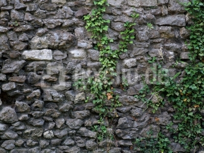 Altes Mauerwerk / Old brickwork