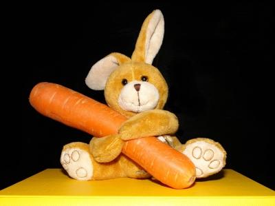 Karotten lassen dich hotten