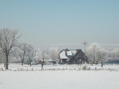 Winterimpressionen 15