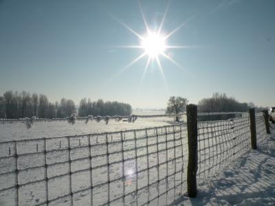 Winterimpressionen 16