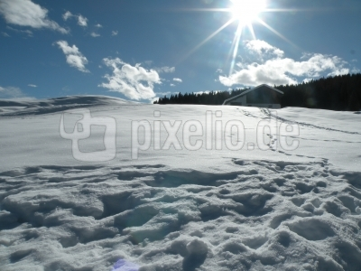 Winterimpressionen 21