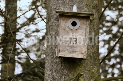 Waldweg 13