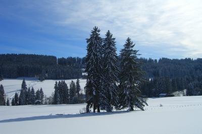 Winterlandschaft im Allgäu