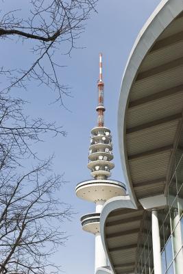 Baum,Fernsehturm und Messehallen