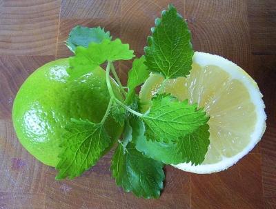 Zitrone-Limone