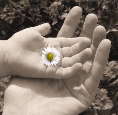 Hände...Geborgenheit