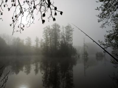 im nebel fischen