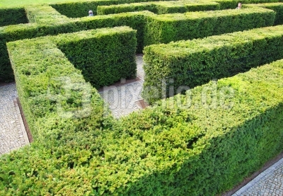 Labyrinth 1/3