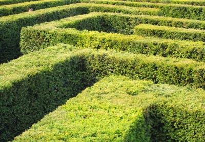Labyrinth 2/3