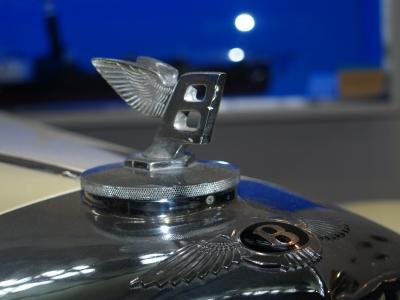 Bentley-Wings