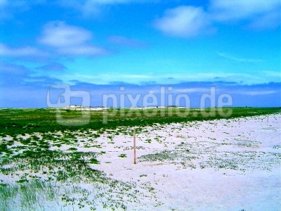 Dünenlandschaft auf Norderney
