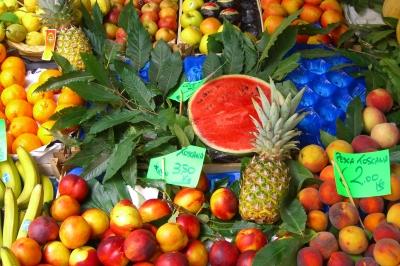 Fruchtstand in der Toskana