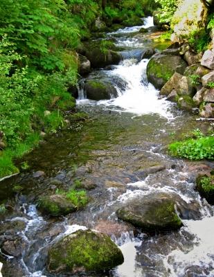 Triberger Wasserfall_1