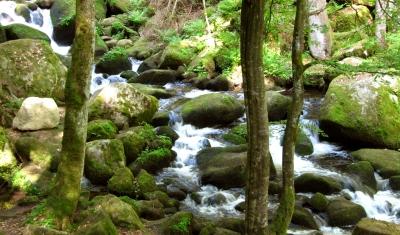 Triberger Wasserfall Oberteil_3