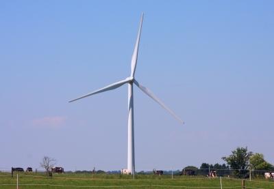 Windrad im Einklang der Natur