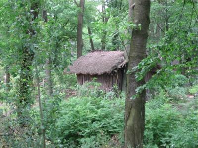 Jungle-Hütte