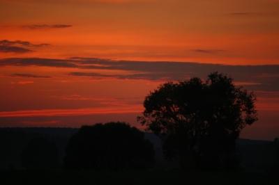 Sonnenuntergang im Fläming