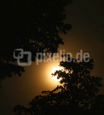 Dunkel war's, der Mond schien helle...
