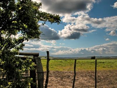 Land Angeln in Schleswig-Holstein