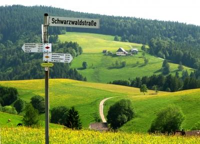 Schwarzwaldstraße und -wege entlang des Westweges