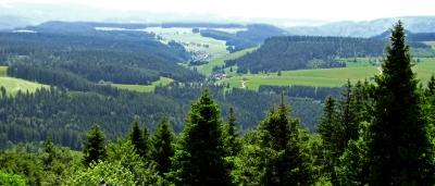 Schwarzwald-Wanderland