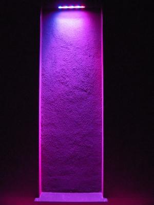 Lila beleuchtete Wand