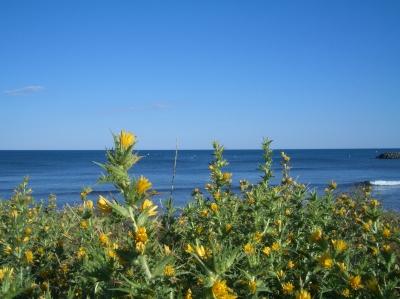 Meer  bei Cap d'Agde 2