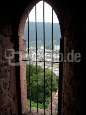 Blick vom Hirschhorner Schloss