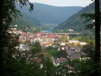 Das Neckartal bei Eberbach