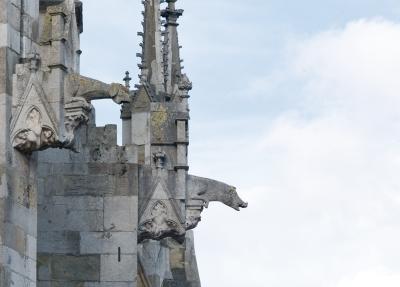 Wasserspeier Dom Regensburg
