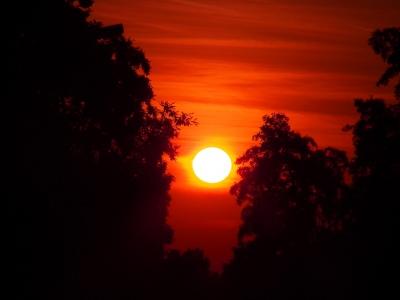 Sonne erwacht!_7