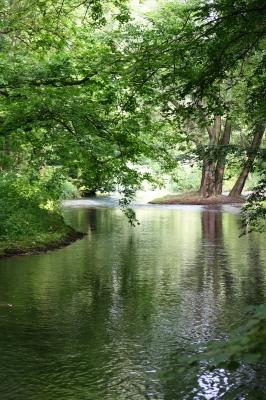 Flussimpressionen 4