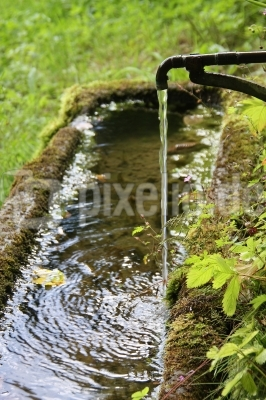 Hörst du wie die Brunnen rauschen ...