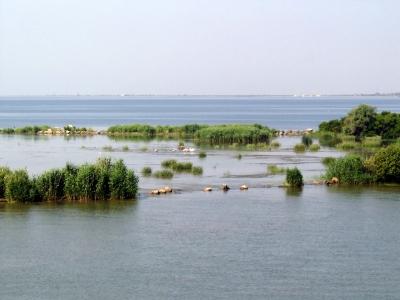 Mündung der Donau (Sulinaarm) ins Schwarze Meer