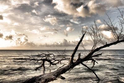 Karibische Wolken am Meer