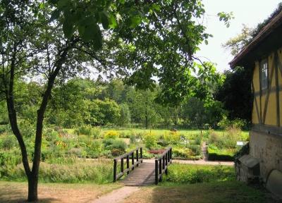 Blick in den Klostergarten