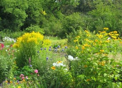 Blütenvielfalt im Klostergarten