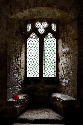 Burg-Fenster mit Rose
