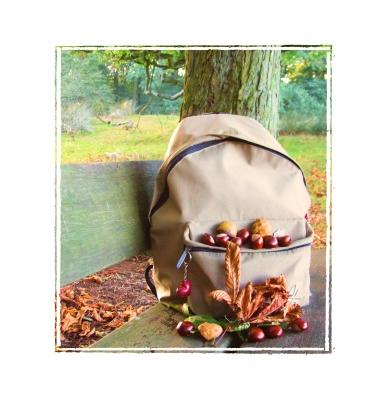 Herbstzeit~Wanderzeit
