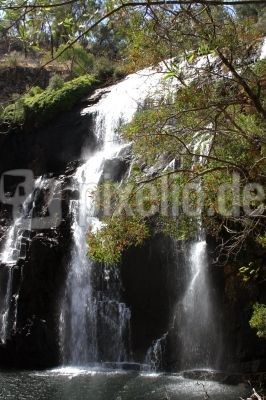 Wasserfall  McKenzie Falls