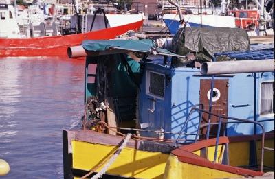 Bunte Farbtupfer im Fischerhafen