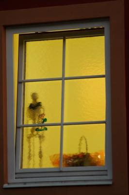 Hinterm Fenster