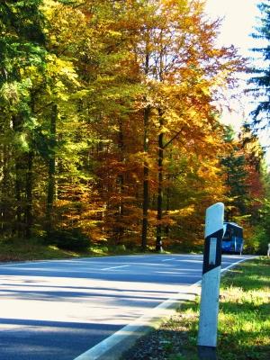 Herbstliche Landstraße mit Omnibus (verdeckt)