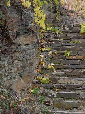 Treppe im Weinberg