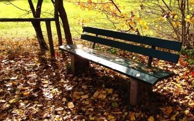 Ruhebank mit Herbstlaub
