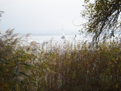 Herbstlicher Chiemsee