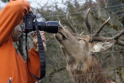 Bitte von mir auch ein Foto machen....