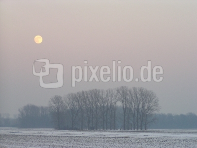 Novemberimpression