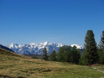Blick in die Walliser Alpen / 2