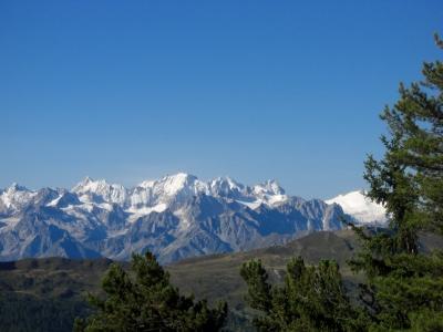 Blick in die Walliser Alpen / 1
